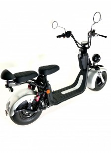 Scooter Electrique Silver -...